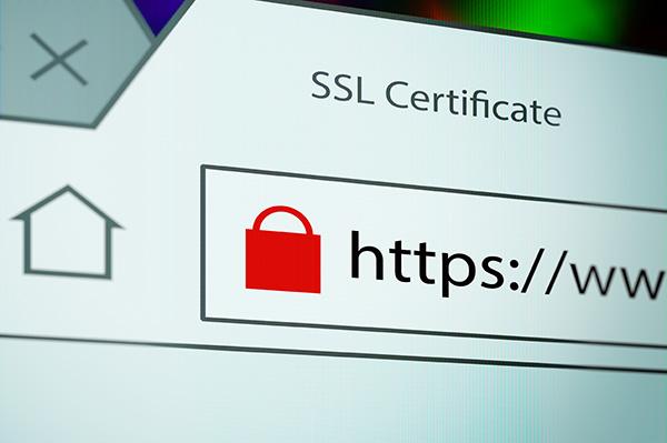 SSL-Zertifikat / https