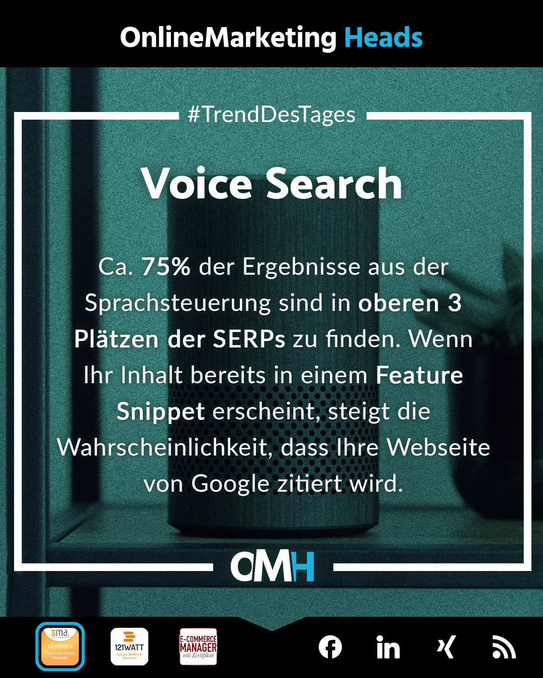 Voice Search SEO Trends 2021 OnlineMarketing Heads